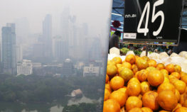 bicadventist air pollution bangkok foods